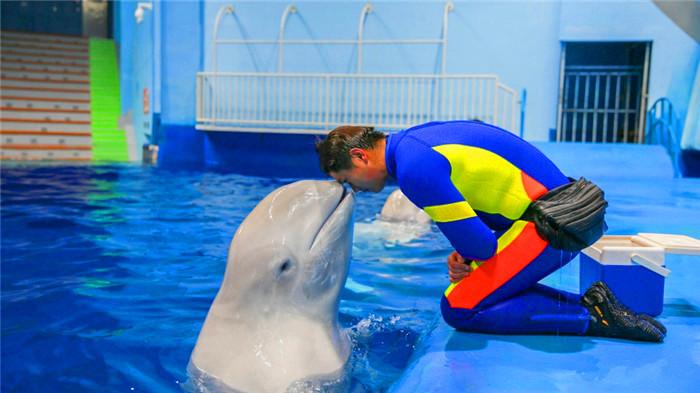 罗源海洋世界白鲸海象馆