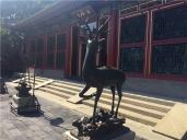 <北京-颐和园-故宫-八达岭5日游>