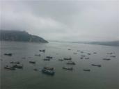 霞浦大京沙滩+出海捕鱼体验一日游(1人起接团,天天发团)