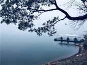 【秀水名山】黄山、千岛湖、宏村(纯玩)双高三日游(2晚市区四星酒店)