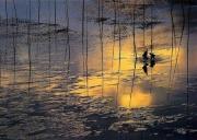 【20人起约】福州出发-太姥山、霞浦三沙东壁、北歧、杨家溪、安东鱼排汽车二日游