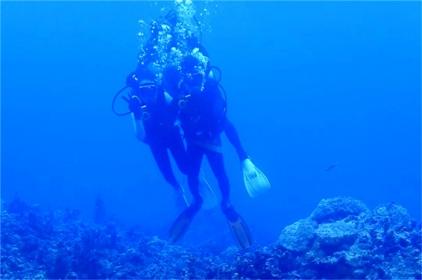 【斐济自由行】香港出发-斐济香港直飞8天6晚自由行--全球五大潜水基地,全球最大的软珊瑚礁群