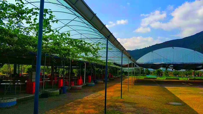 旗山万林生态园
